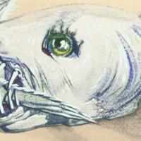 Ouroboros, Detail 2